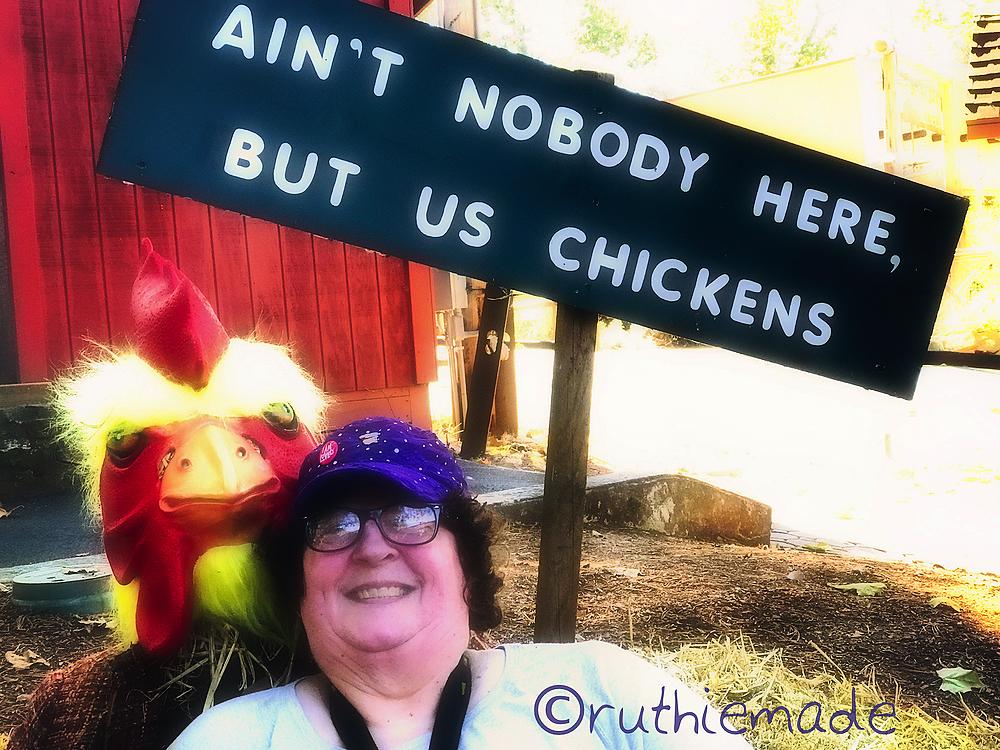 ST Chickens (No Turkeys)