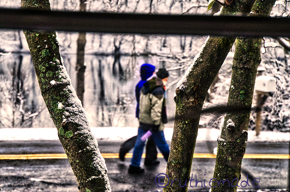 Tree Framed walkers