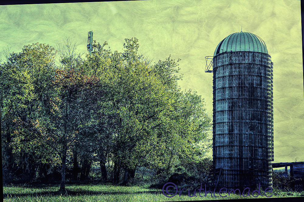Silo and Trees