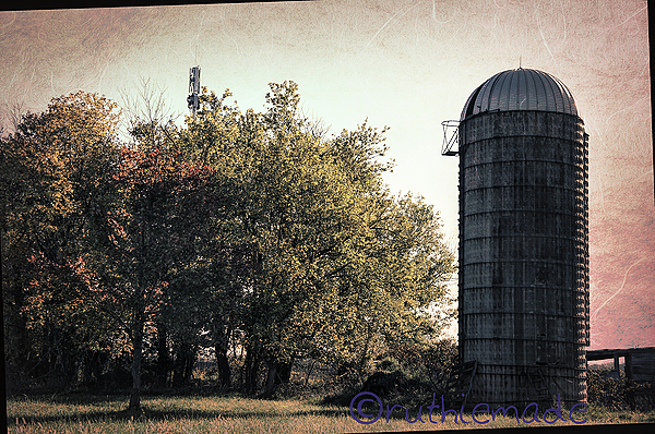 SIlo and Trees 2