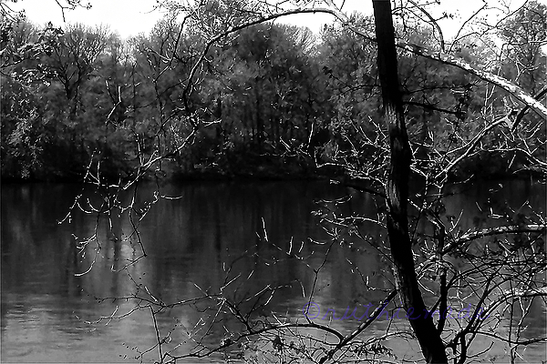 Life in B&W River Frame