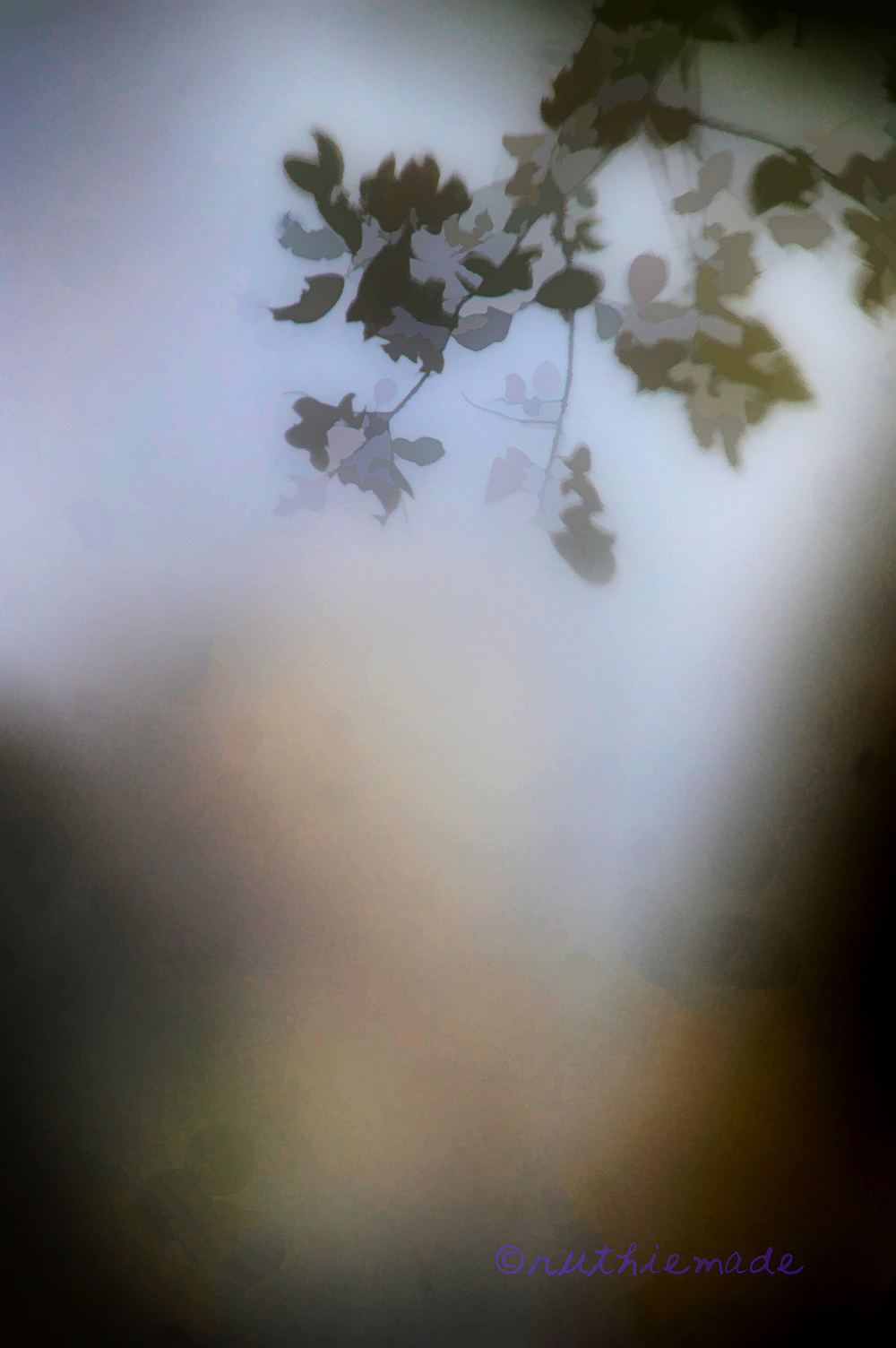 Misty Leaves