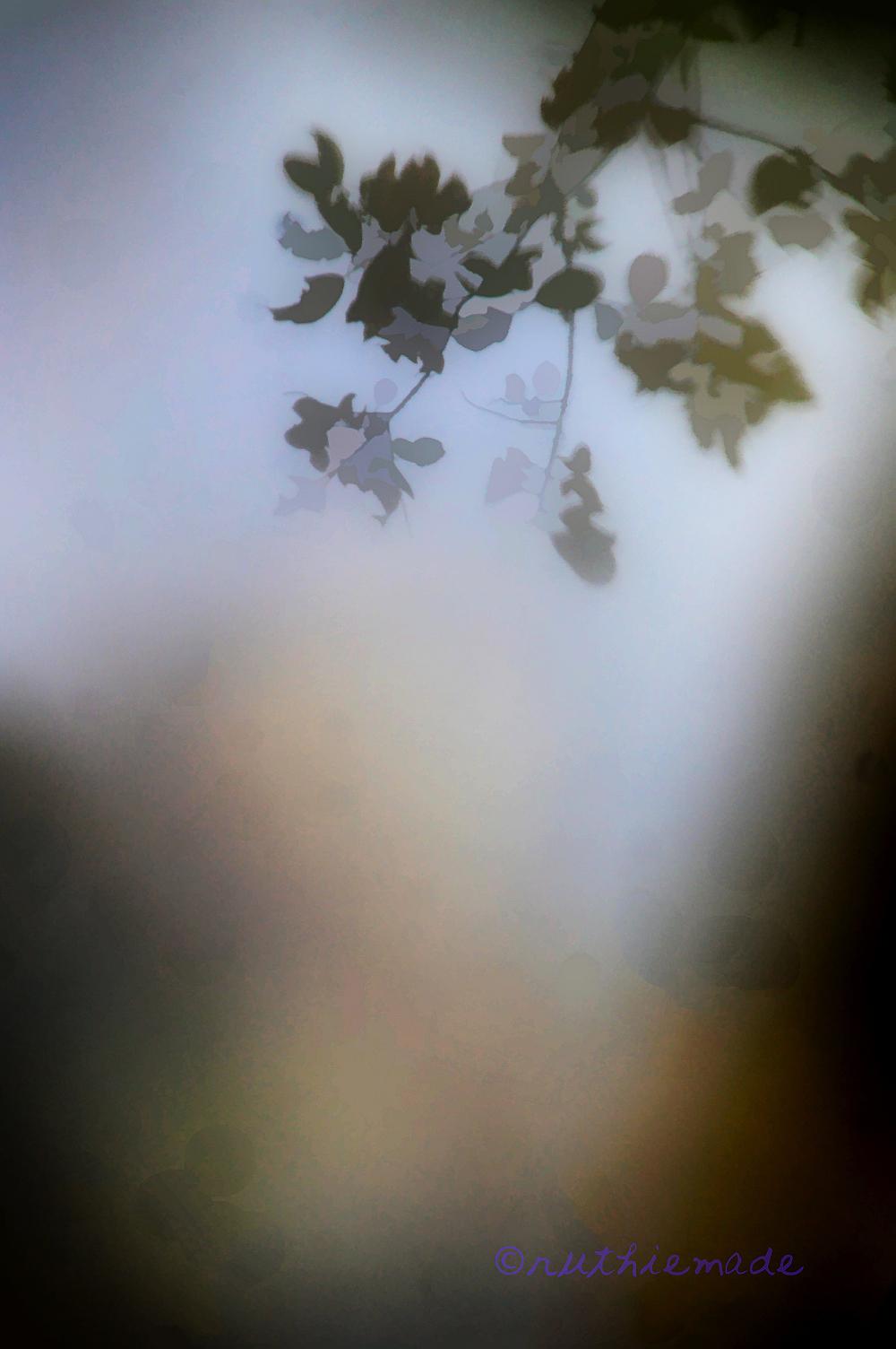 Misty Leaves
