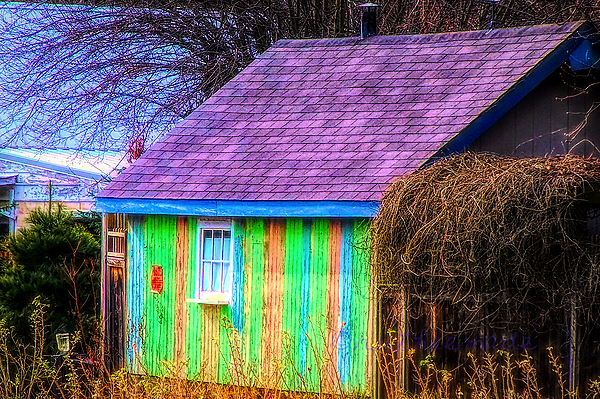 Rainbow Shed