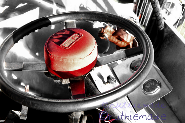 Circle of Life Red horn steering wheel