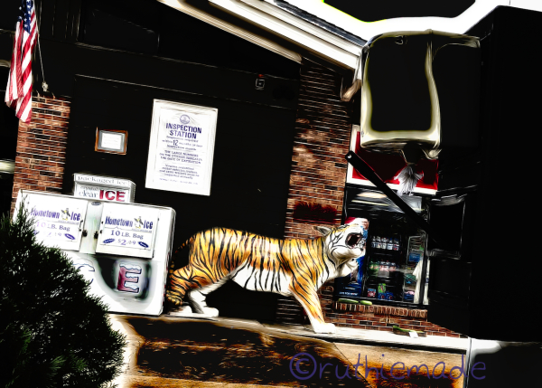 ST Tiger in your tank