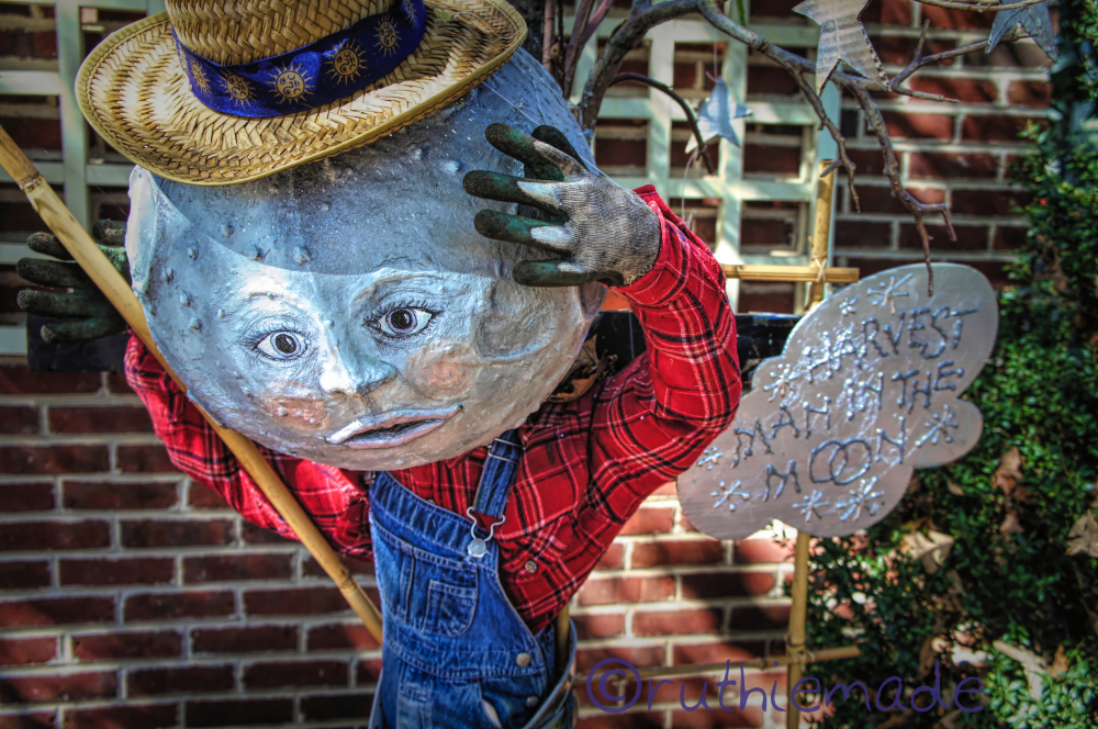 CIrcle of LIfe WOrld Scarecrow