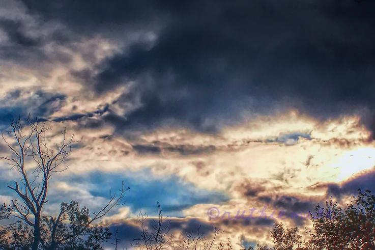 February Winter Sky