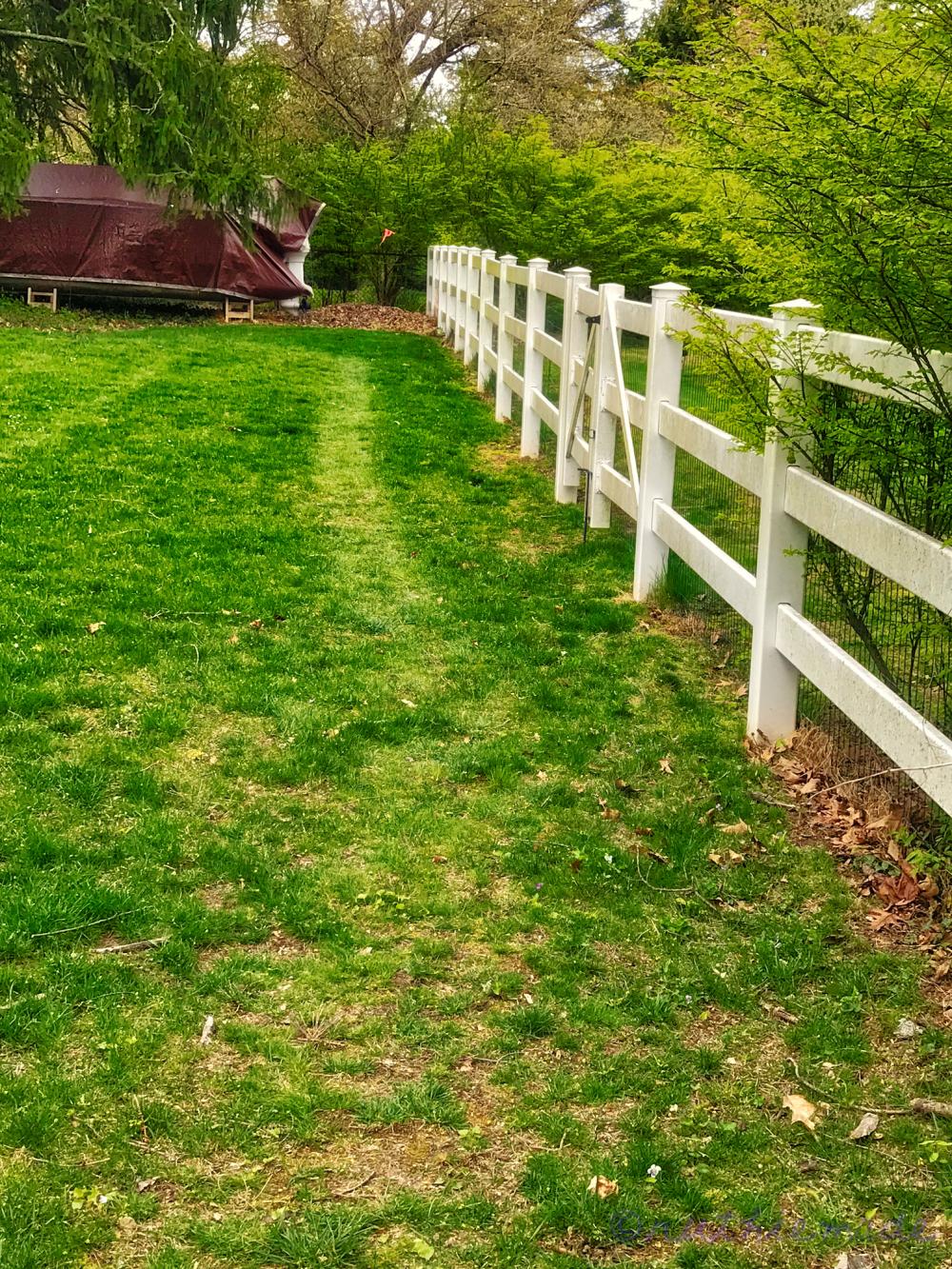ST Garden Path