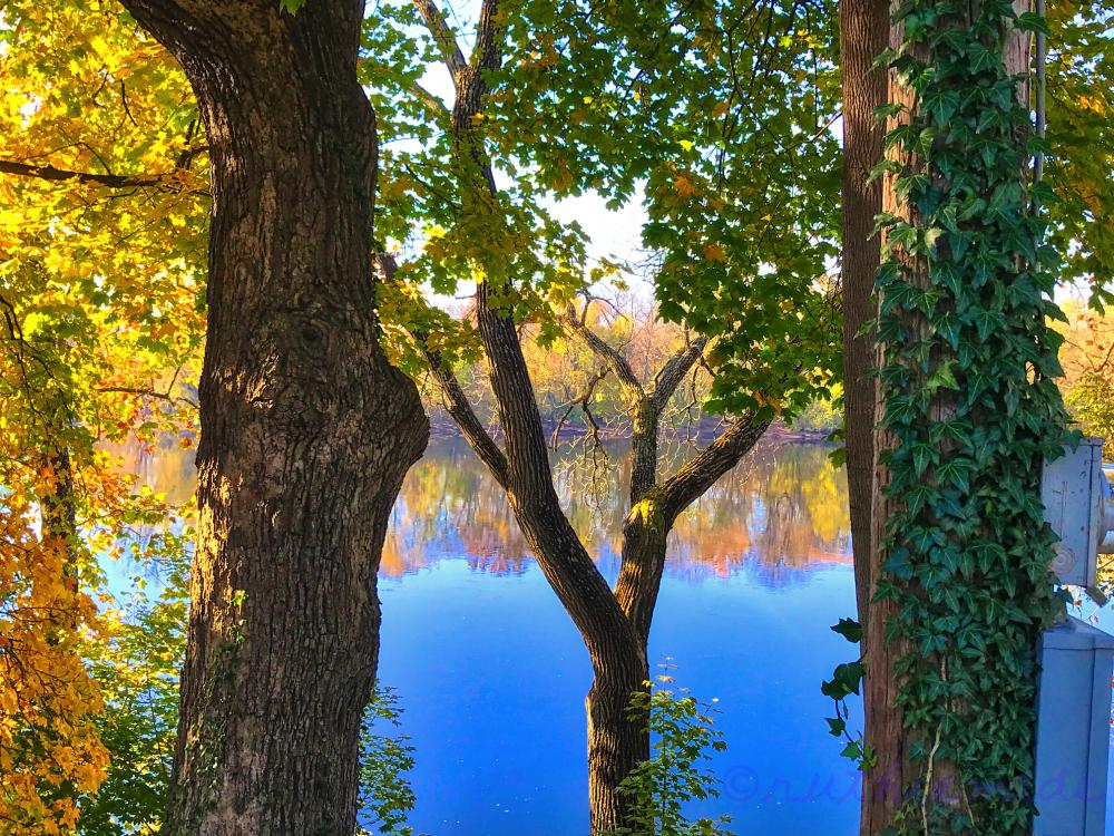 November river View