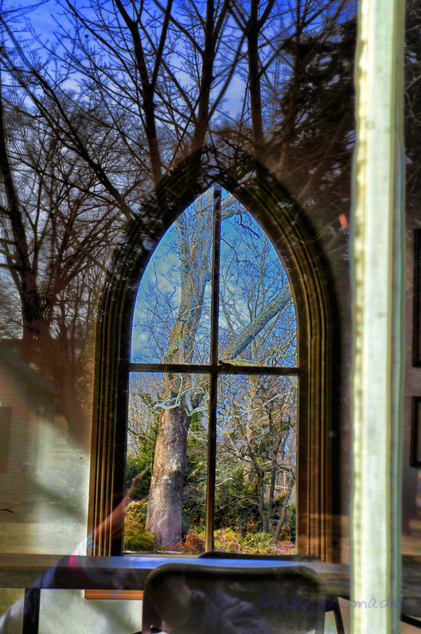 ST Looking glass
