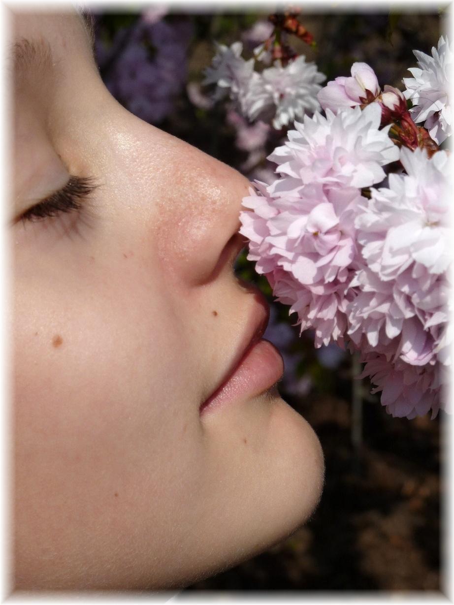 Girl & Blossom