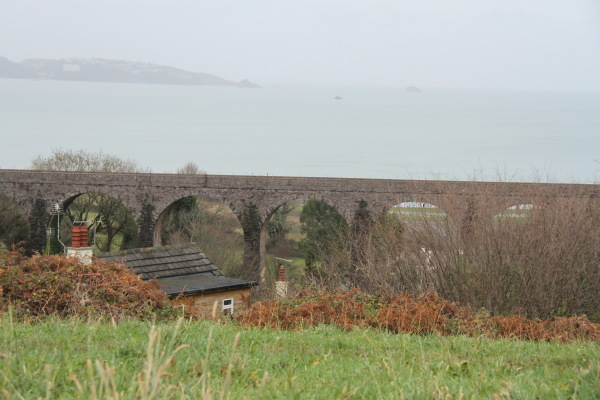 Train Bridge , Devon ...