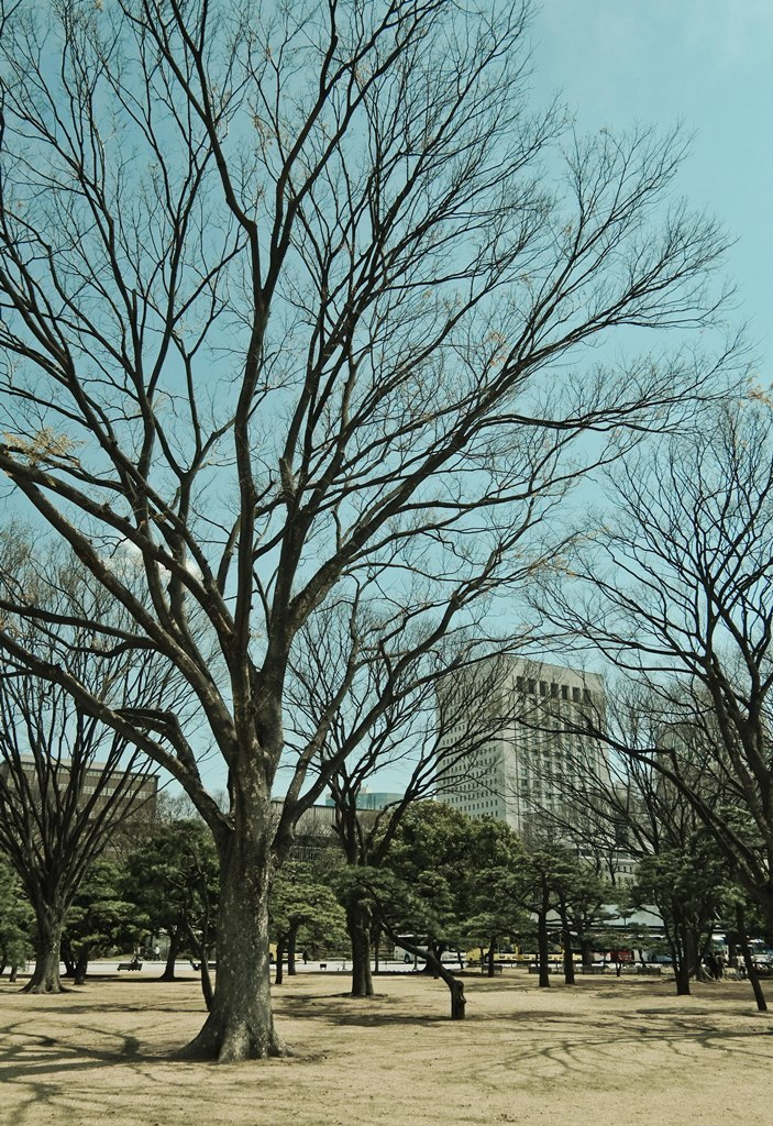 Outside Tokyo Imperial Palace