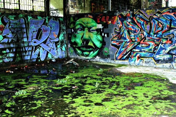 urbex, friche, fresque, tag, bomber, peinture, mur