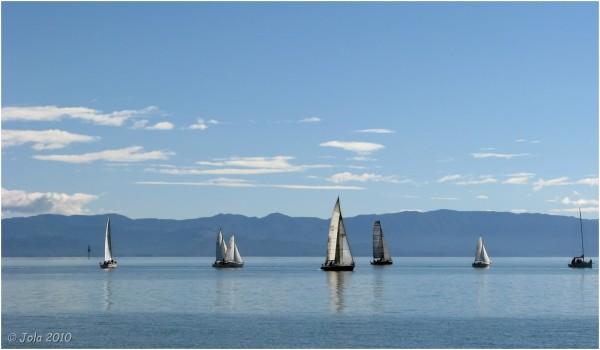 sail, boat, ocean, sea, calm, New Zealand, Nelson,