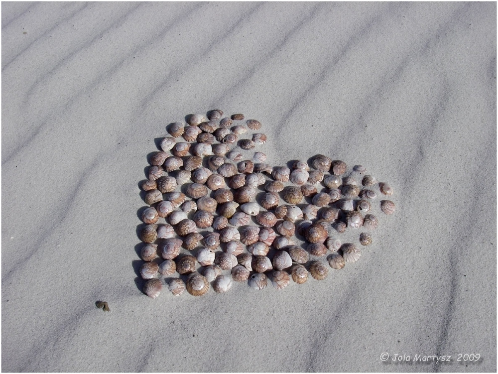 beach, sand, treasure, heart, shells