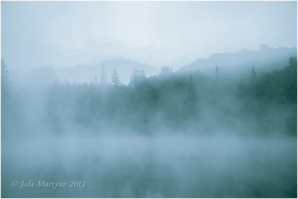 fog, foggy, mist, misty landscape, scape, morning,