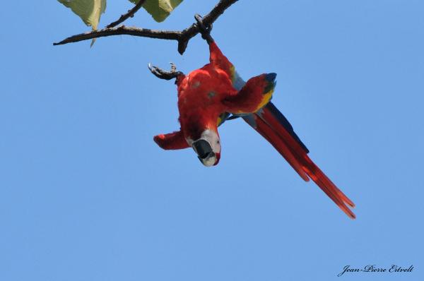 Costa Rica 149
