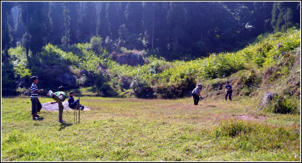 Cricket by the hill