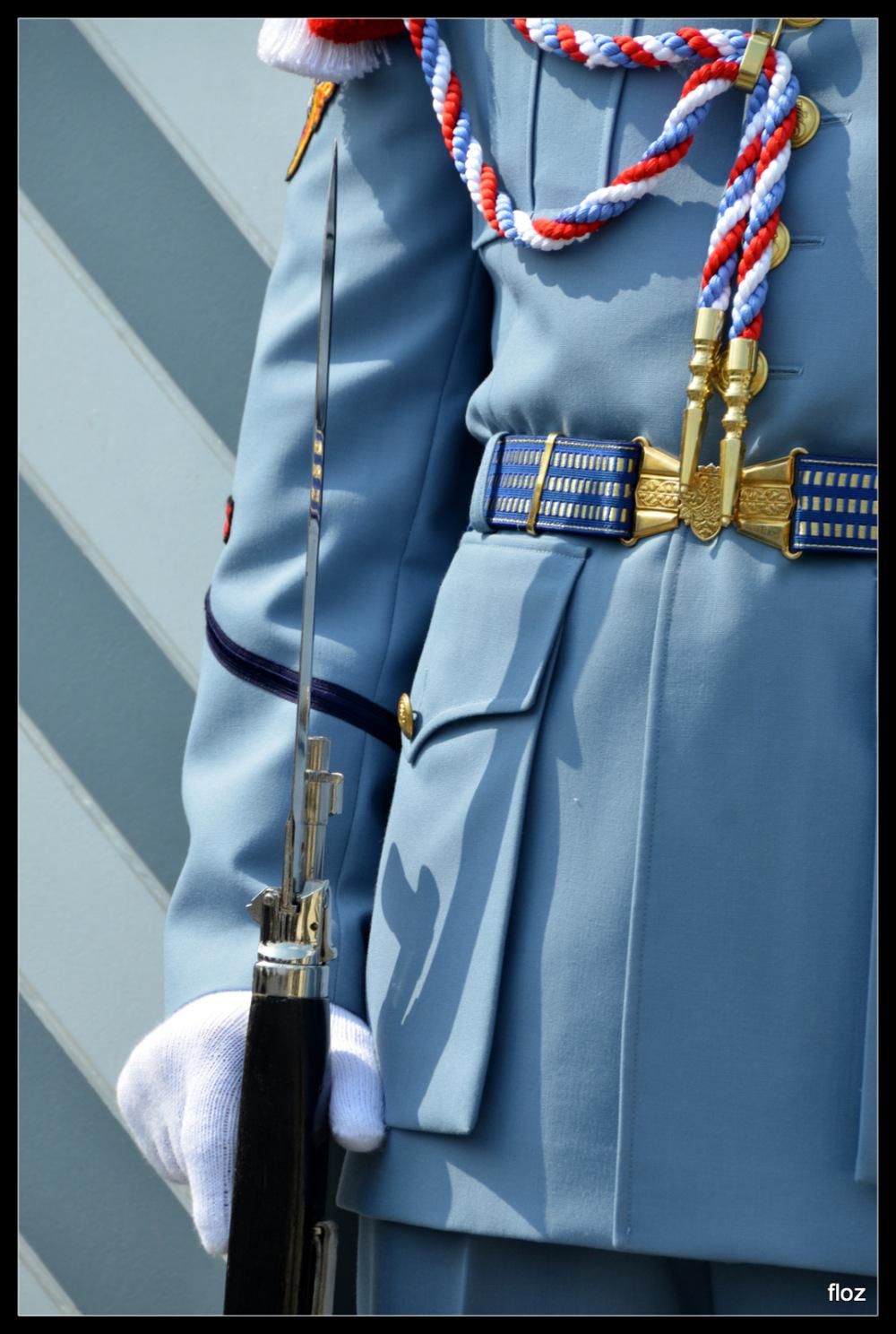 garde tchèque