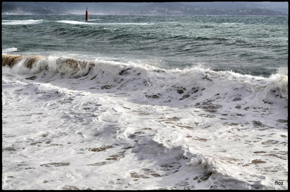 d'une mer battue par le vent