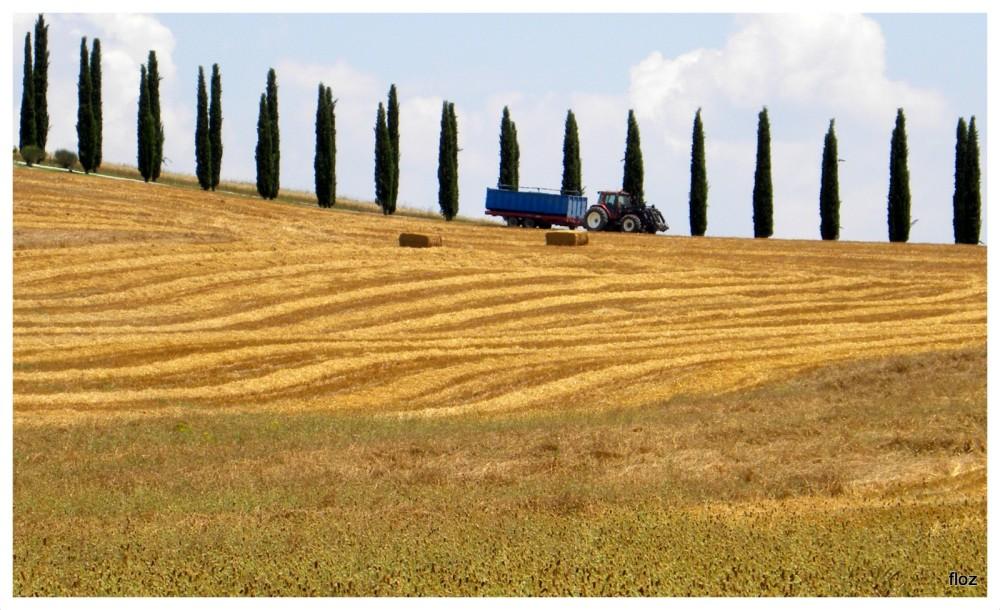 l'agriculture à visage humain...