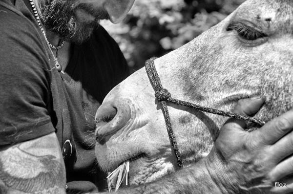 l'homme et l'âne