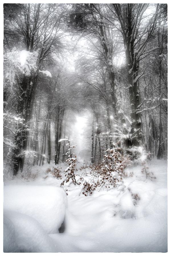 La neige, c'est la tombée du rêve sur la réalité.