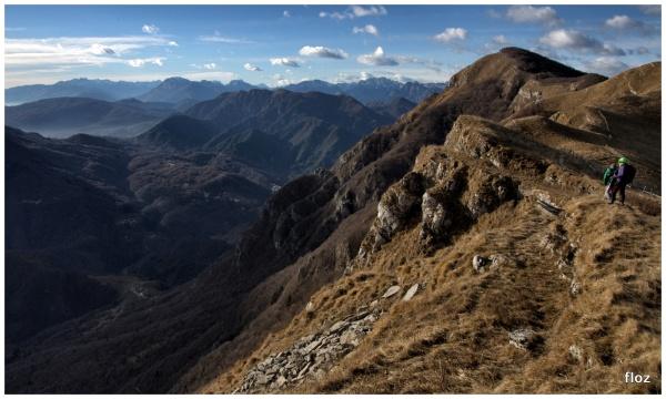 Monte Cuar