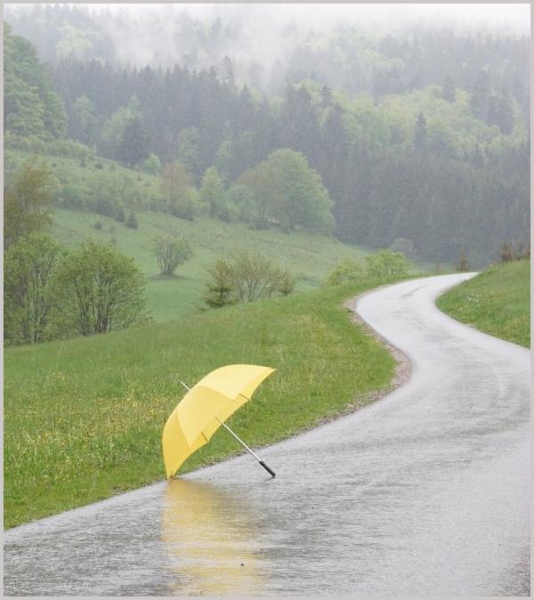 umbrella time