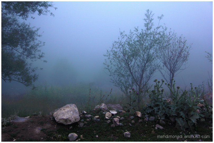 Nandal village  fog