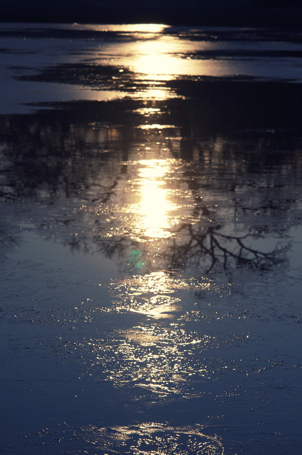 Water and Ice at Sunrise