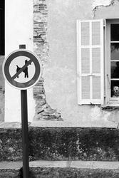 Une vie de chien.
