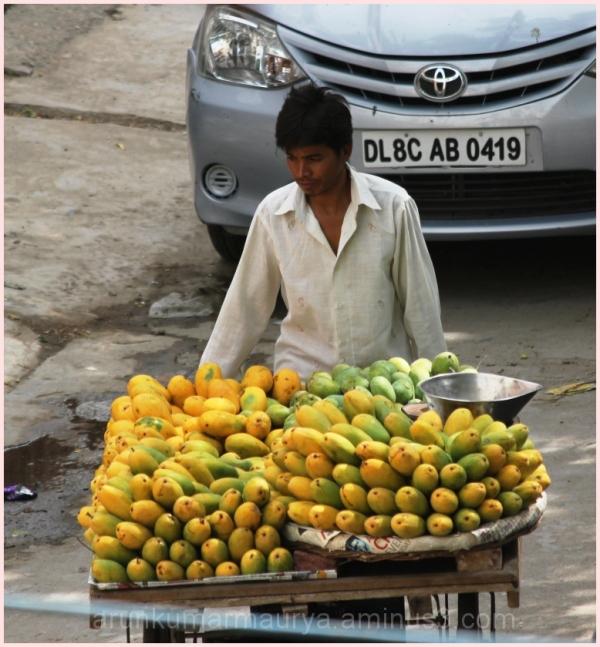 King of Fruits (Mango/Dashhari)