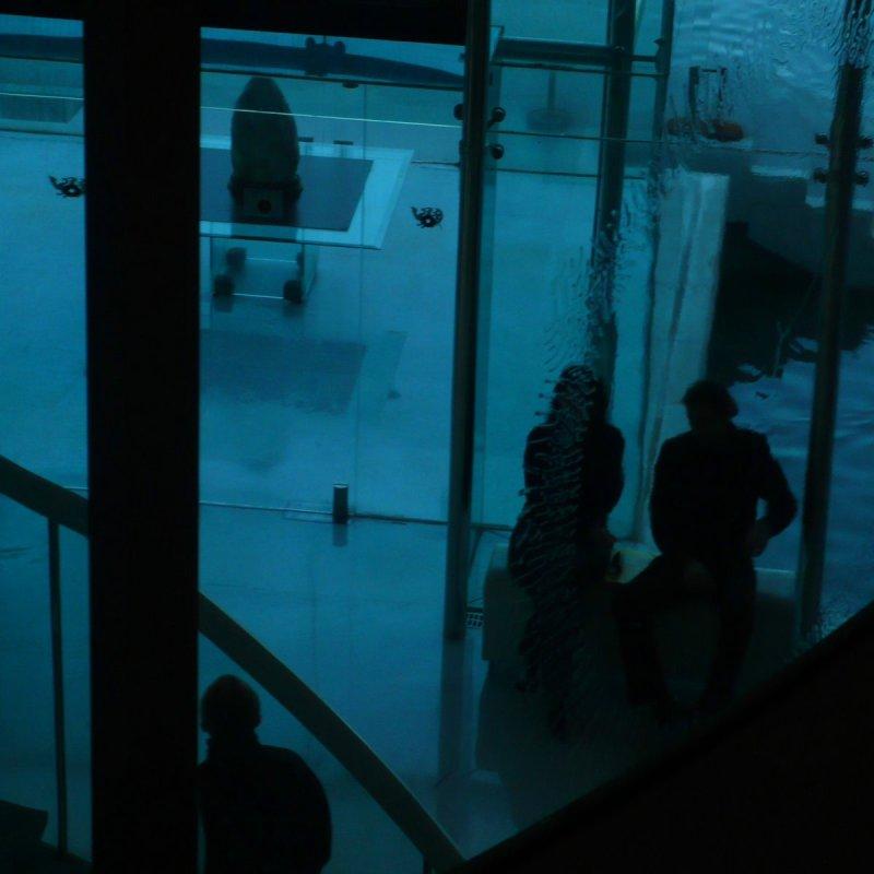 Ombres chinoises au musée d'art asiatique
