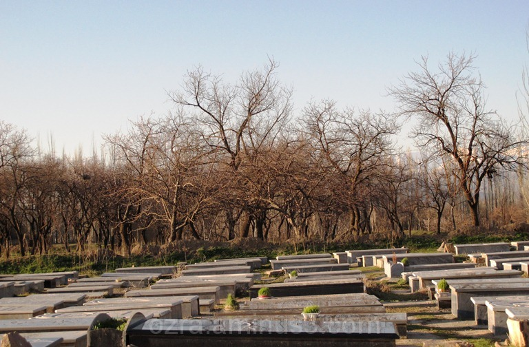 Cemetery spring