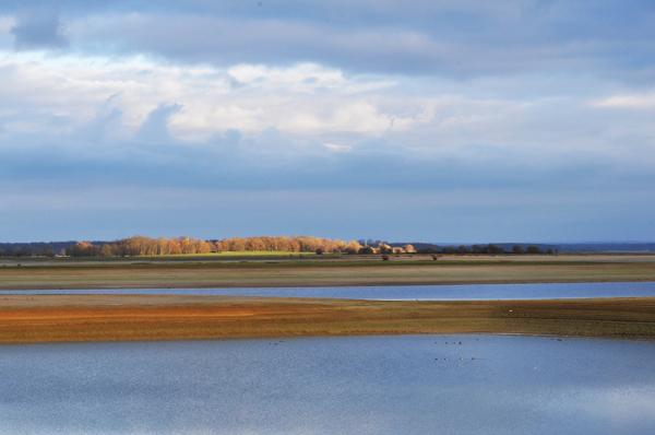 Un rayon de soleil sur le lac du Der à sec