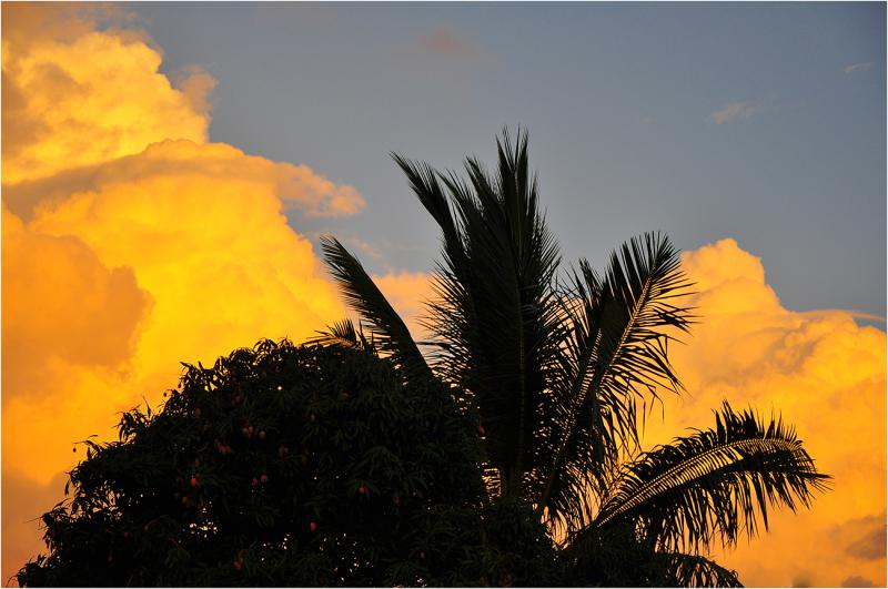 Les nuages jaunes