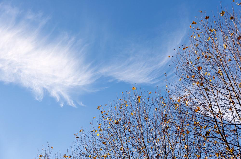 Une caresse de nuage