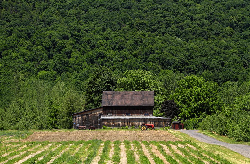 une vieille grange nichée au pied du mont Yamaska