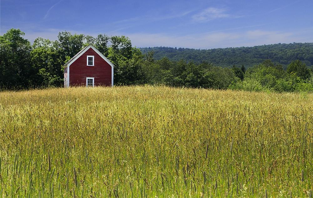 petite maison dans la prairie
