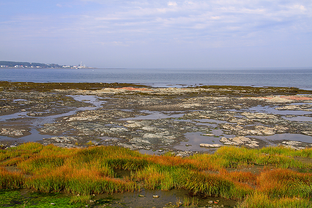 Sainte-Luce sur mer