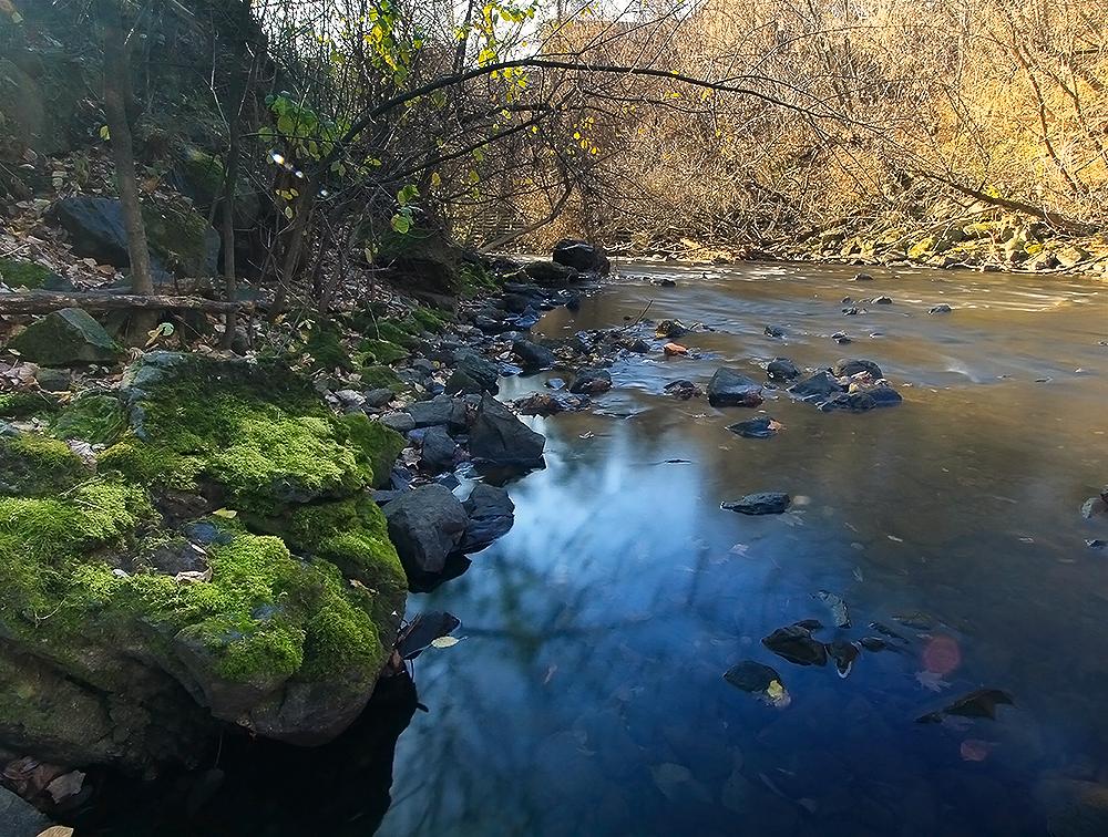 rivière Yamaska