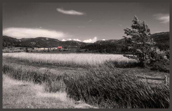 petite maison au toit rouge