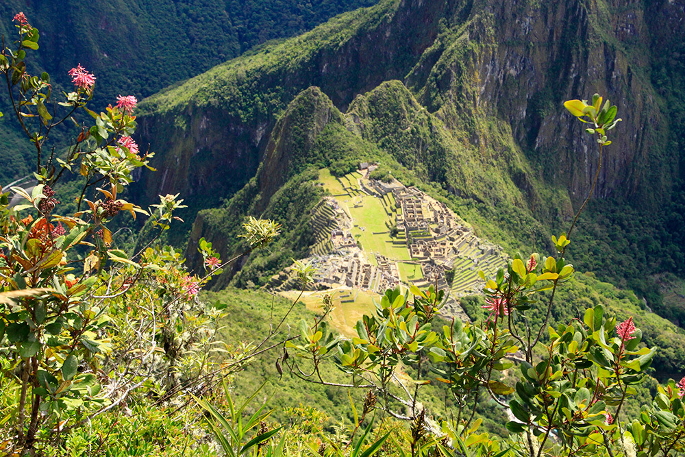 Machu Picchu from the summit
