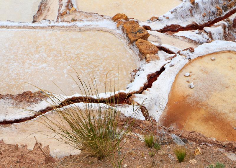 Las Salinas evaporation ponds