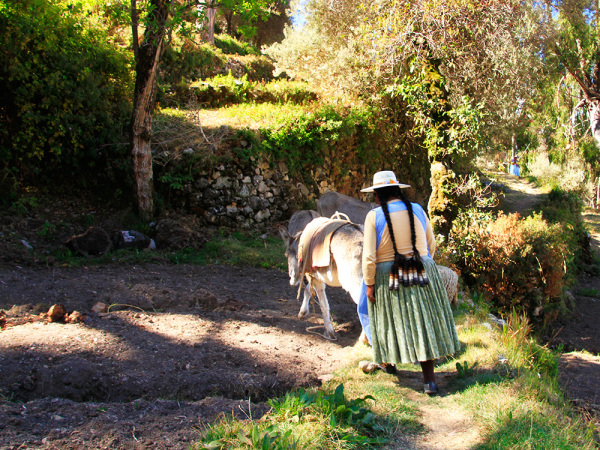 Woman with a donkey on Isla del Sol
