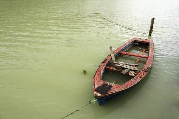An old boat in Caleta Tortel