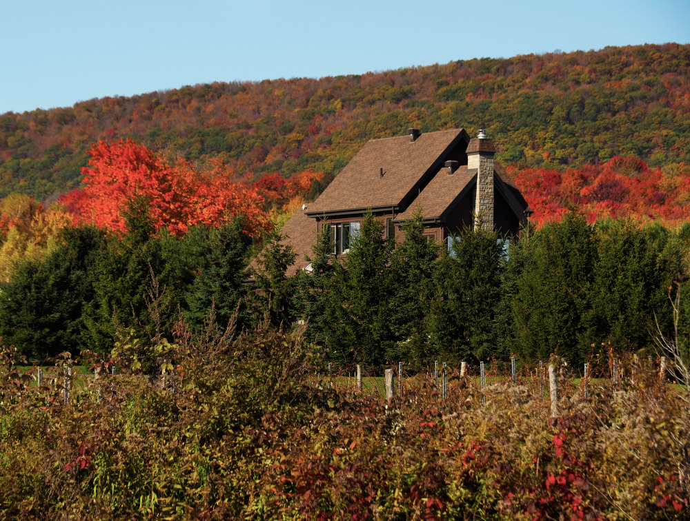 A house surrounded by red trees